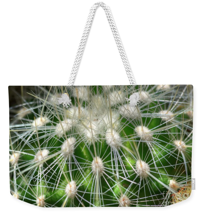 Cactus Weekender Tote Bag featuring the photograph Cactus 1 by Jim And Emily Bush