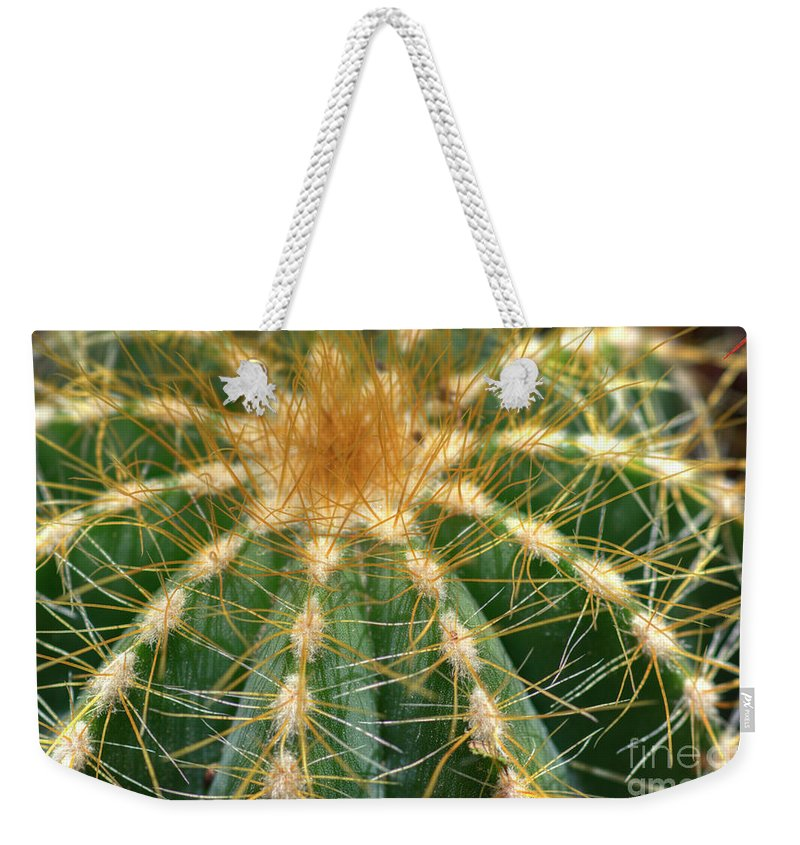 Cactus Weekender Tote Bag featuring the photograph Cactus 2 by Jim And Emily Bush