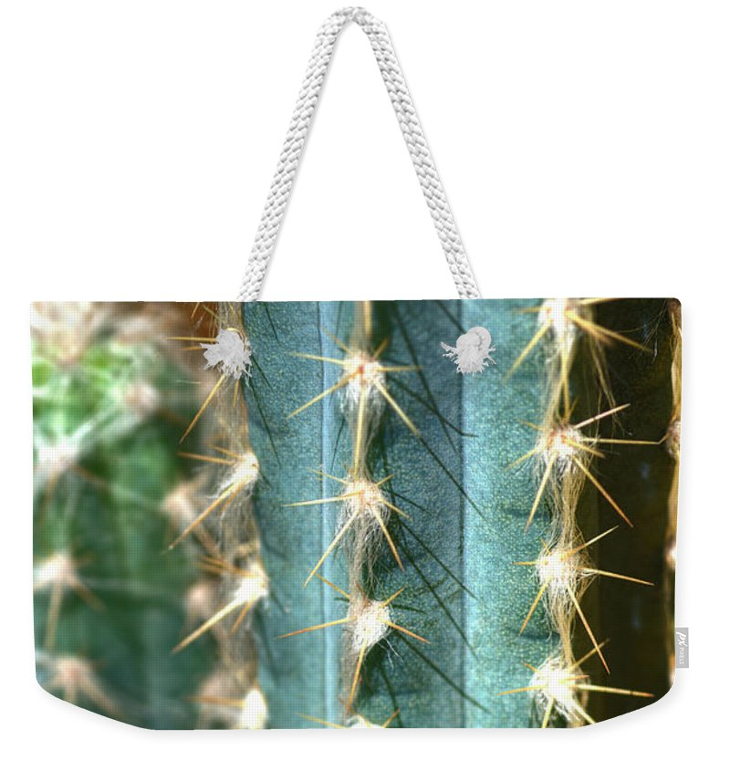Cactus Weekender Tote Bag featuring the photograph Cactus 3 by Jim And Emily Bush