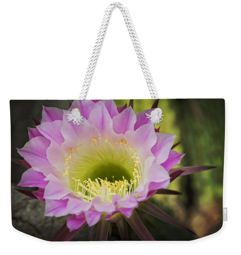 Cactus Weekender Tote Bag featuring the photograph Cactus Bloom by Ricky Barnard
