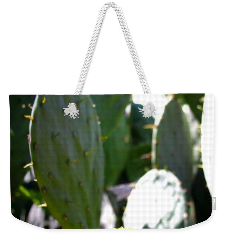 Cactus Weekender Tote Bag featuring the photograph Cactus Bloom by Tina Meador
