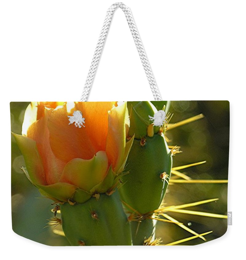Prickle Pear Cactus Weekender Tote Bag featuring the digital art Cactus Buds by Diane Greco-Lesser