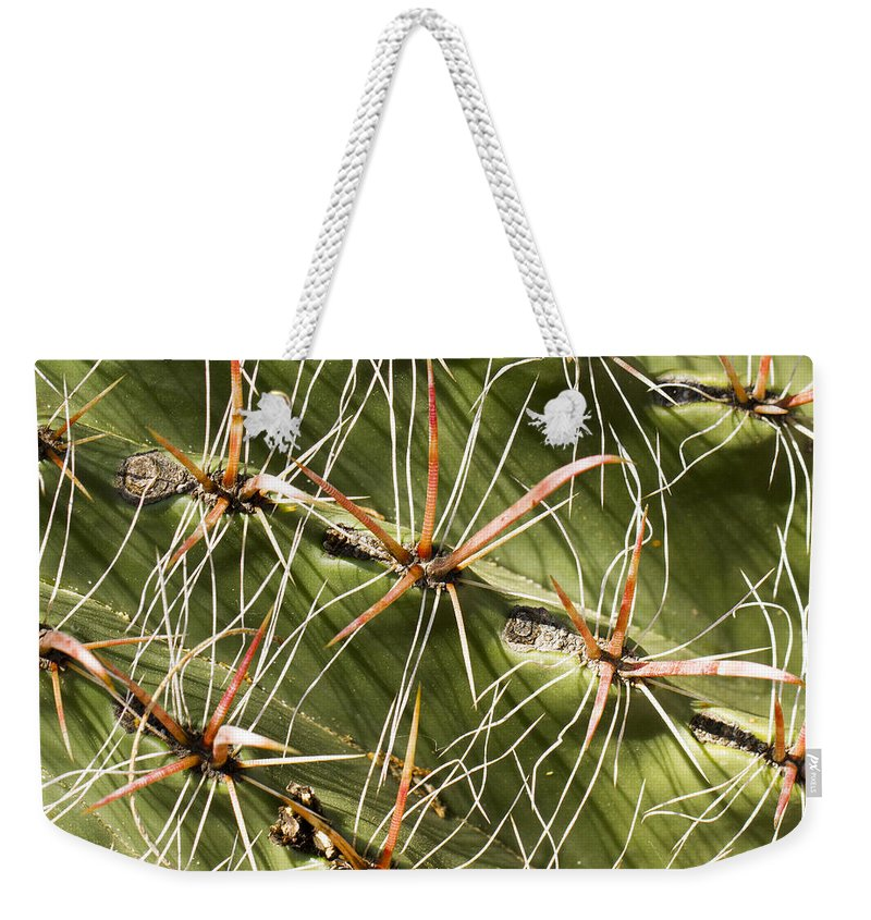 Color Weekender Tote Bag featuring the photograph Cactus Diagonal Pattern by Jean Noren
