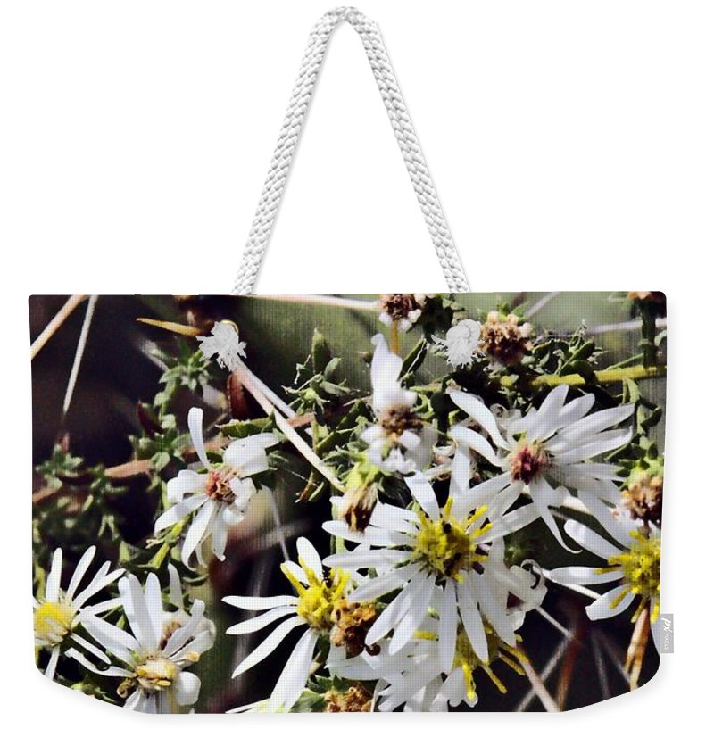 Cactus Weekender Tote Bag featuring the photograph Cactus Flowers by Scott Wyatt
