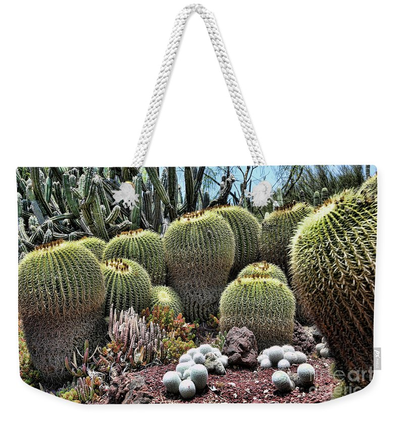 Nature Weekender Tote Bag featuring the photograph Cactus Galore by Chuck Kuhn
