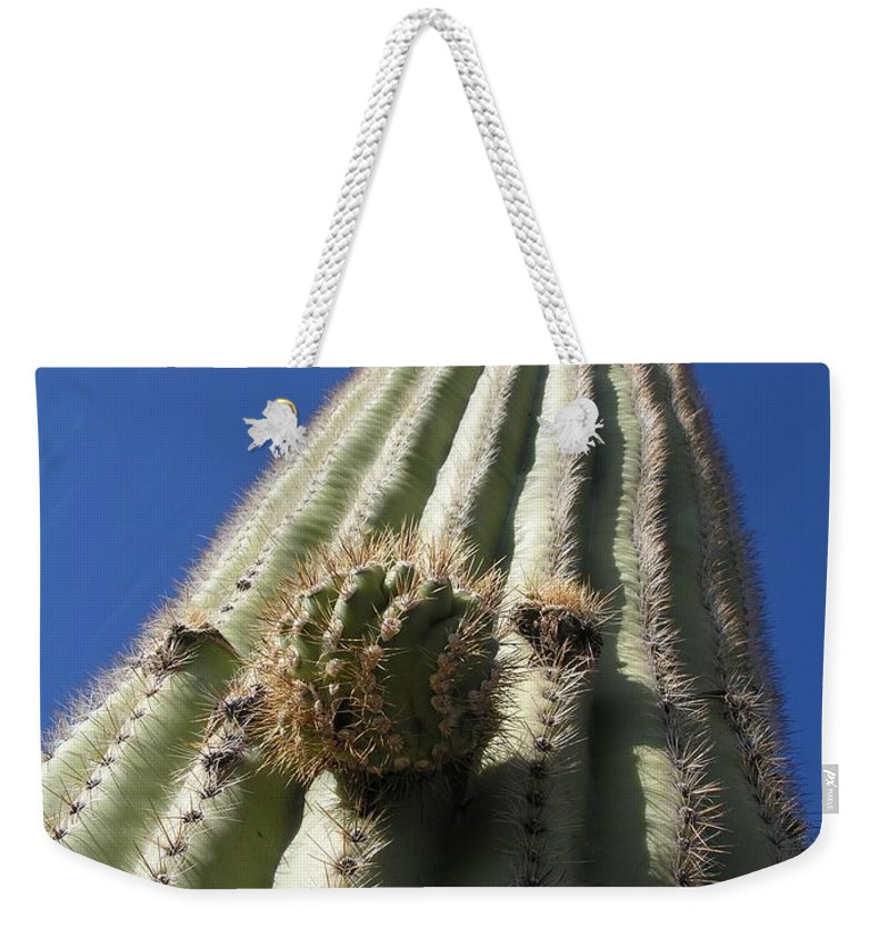 Cactus Weekender Tote Bag featuring the photograph Cactus In The Sky by Diane Greco-Lesser