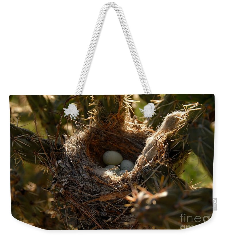 Cactus Weekender Tote Bag featuring the photograph Cactus Nest by David Lee Thompson