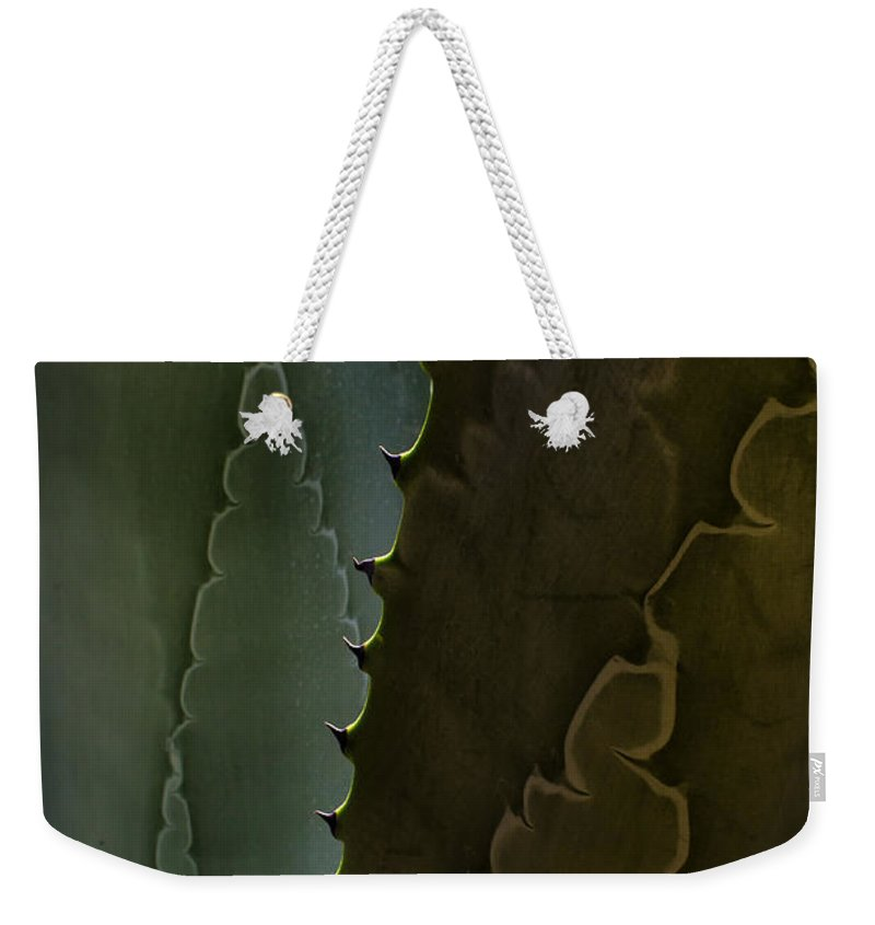 Cactus Outlined Weekender Tote Bag featuring the photograph Cactus Outlined by Robert VanDerWal