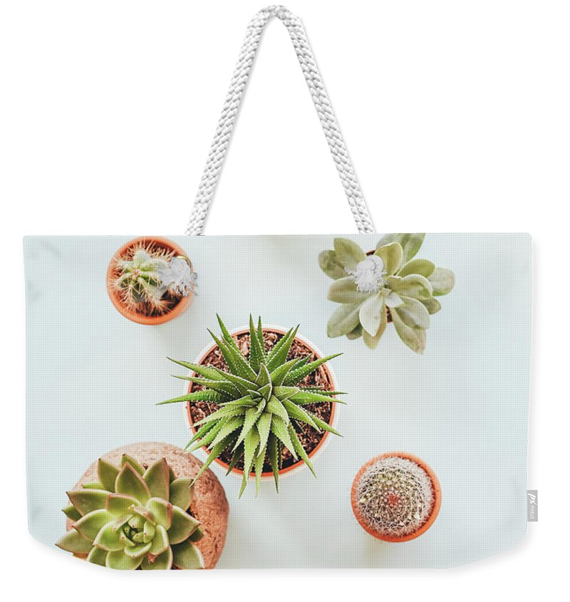 Cactus Weekender Tote Bag featuring the photograph Cactus Pots by Happy Home Artistry
