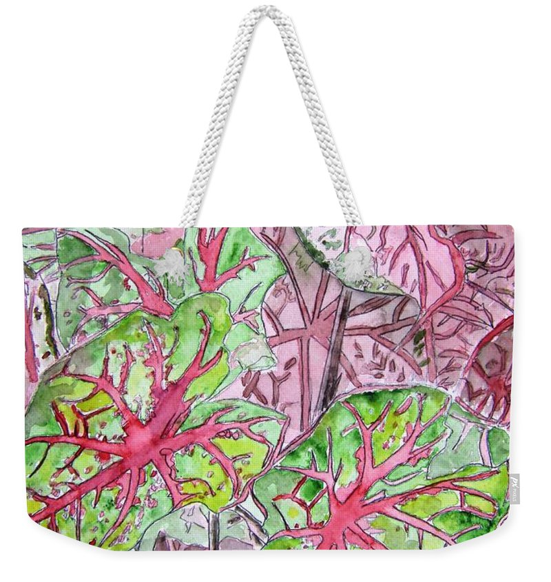 Watercolour Weekender Tote Bag featuring the painting Caladiums Tropical Plant Art by Derek Mccrea
