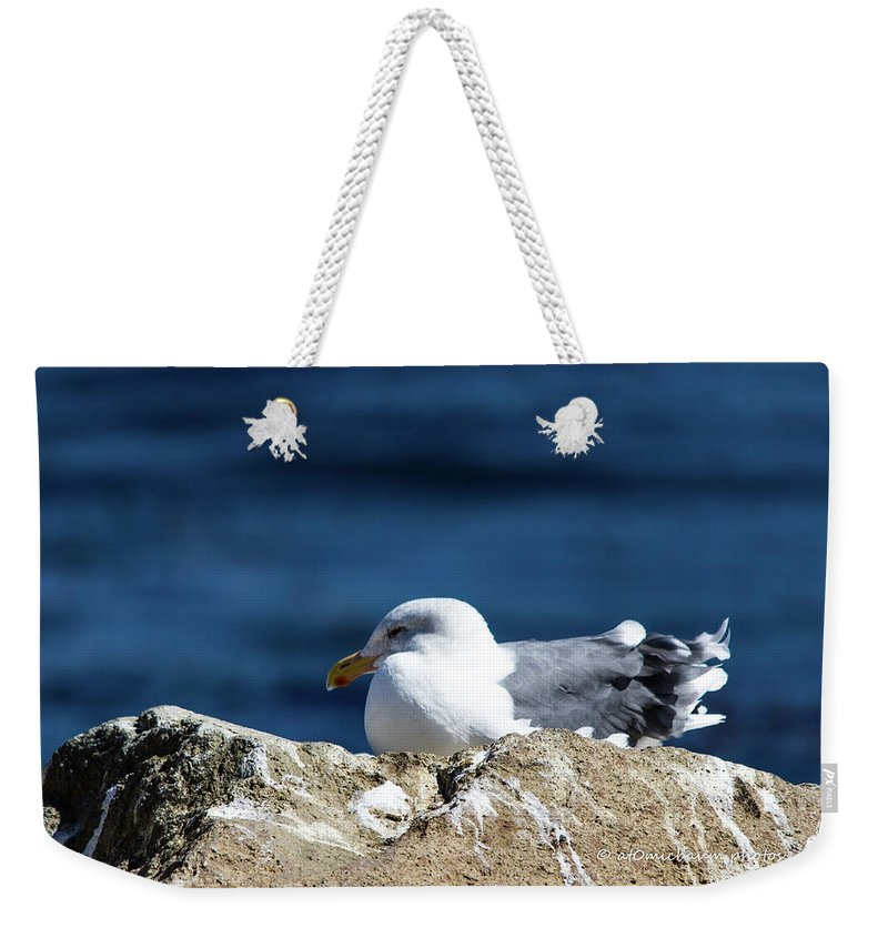 Moro Bay Weekender Tote Bag featuring the photograph California Dreamin' by Danny Baum