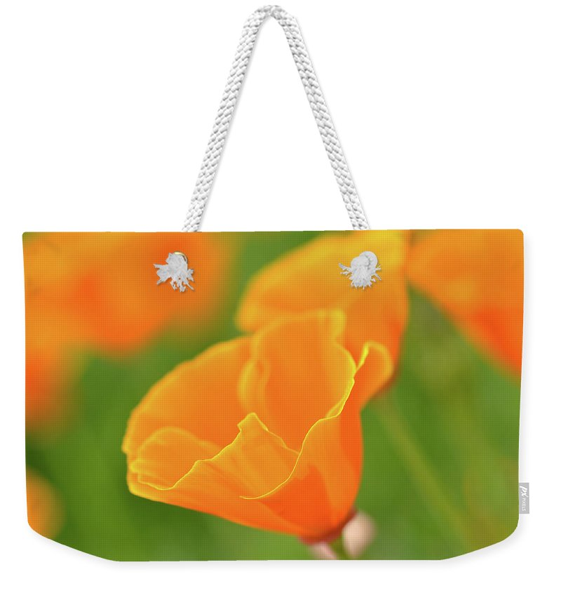 Flower Weekender Tote Bag featuring the photograph California Spring Poppy Macro Close Up by Brandon Bourdages