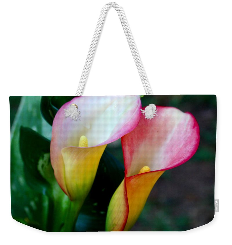 Calla Lily Weekender Tote Bag featuring the photograph Calla Lily Twins by Paul Anderson