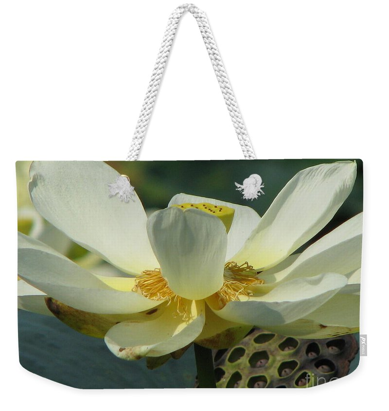 Lotus Weekender Tote Bag featuring the photograph Calm by Amanda Barcon