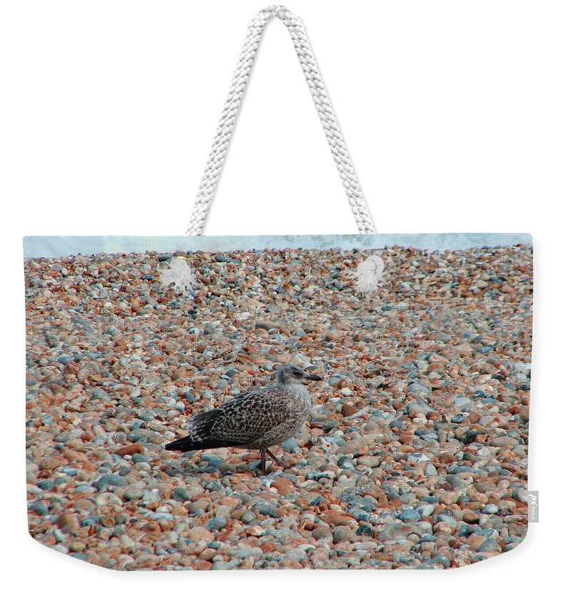 Camo Weekender Tote Bag featuring the photograph Camo Chick by Heather Lennox