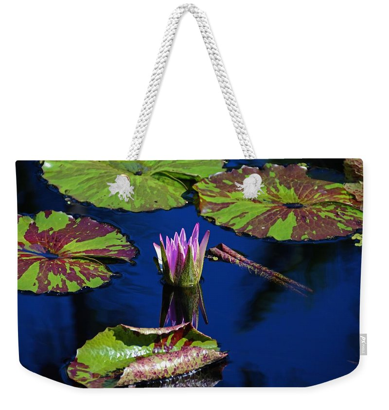 Water Lily Weekender Tote Bag featuring the photograph Can You Sit For Awhile by Michiale Schneider
