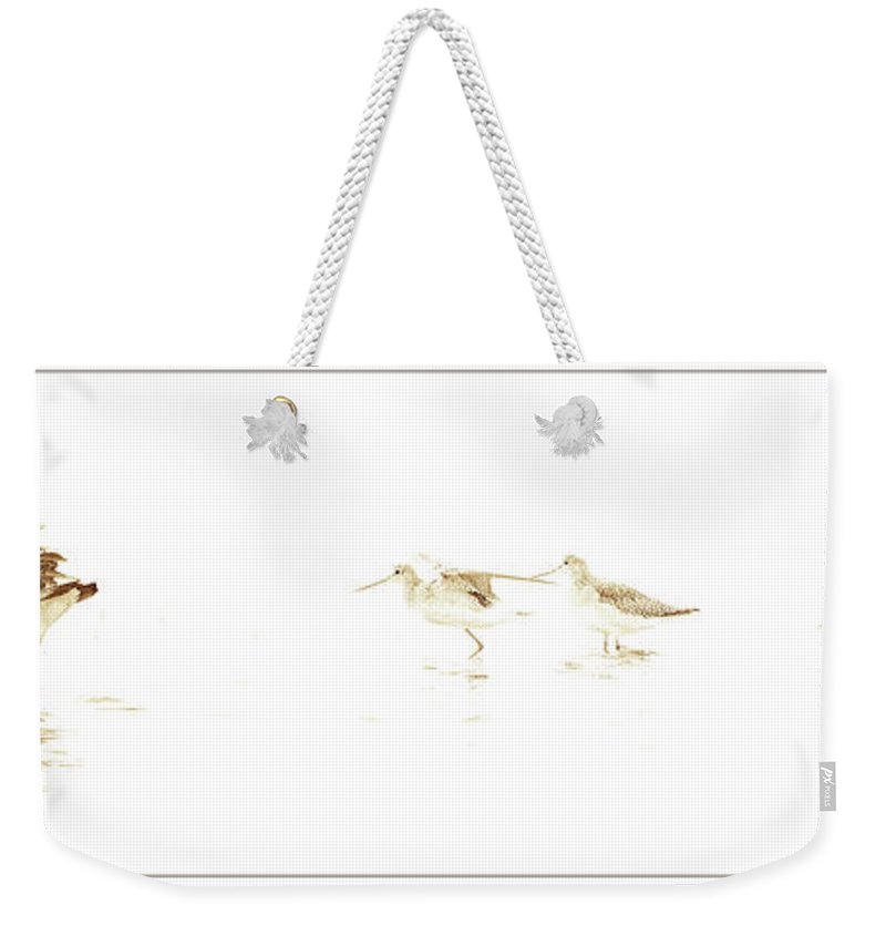Canada Goose Weekender Tote Bag featuring the digital art Canada Goose And Sandpipers In Salt Marsh by A Gurmankin