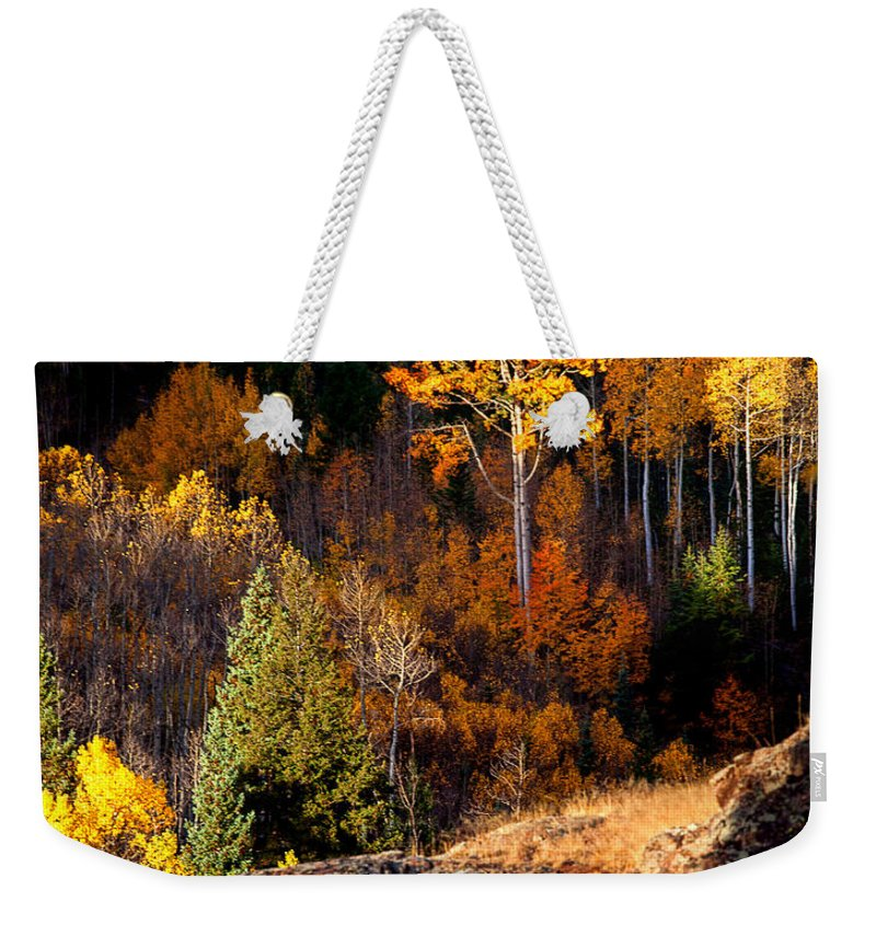 Autumn Colors Weekender Tote Bag featuring the photograph Candlesticks by Jim Garrison