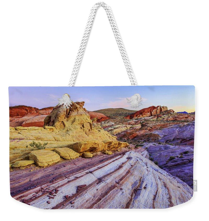 Desert Weekender Tote Bags