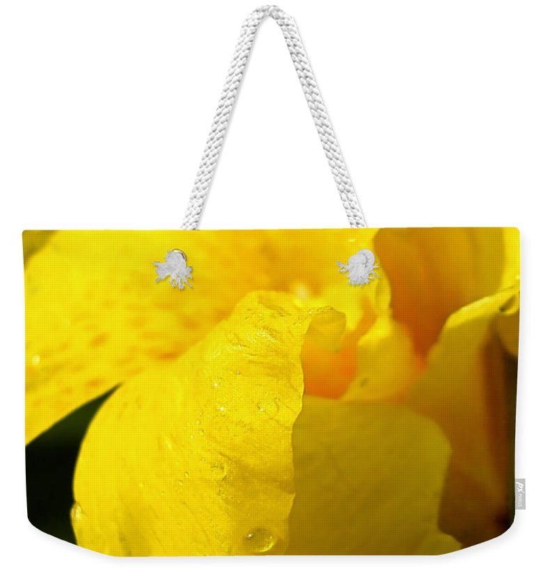 Flower Weekender Tote Bag featuring the photograph Canna At Sunrise by Todd A Blanchard
