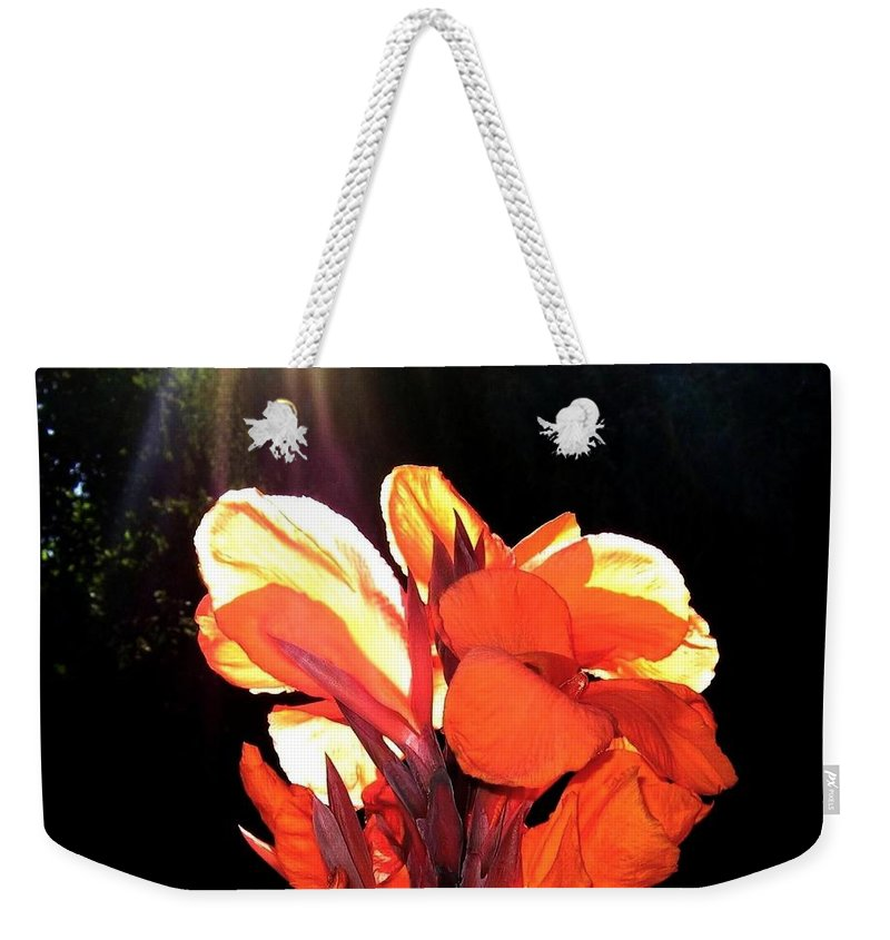 Canna Lily Weekender Tote Bag featuring the photograph Canna Lily by Will Borden