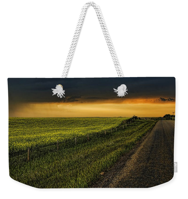 Canola Weekender Tote Bag featuring the photograph Canola And The Road Ahead by Wayne Sherriff