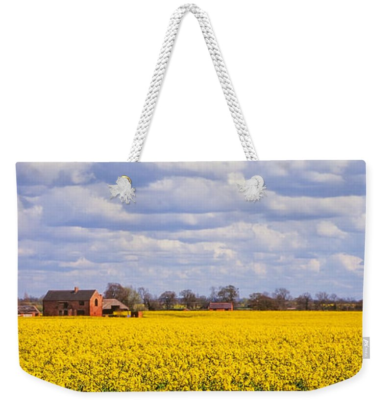 Canola Weekender Tote Bag featuring the photograph Canola Field by John Edwards