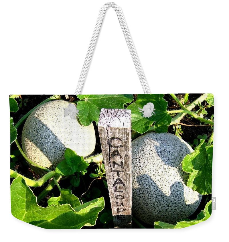 Cantaloupe Weekender Tote Bag featuring the photograph Cantaloupe by Will Borden