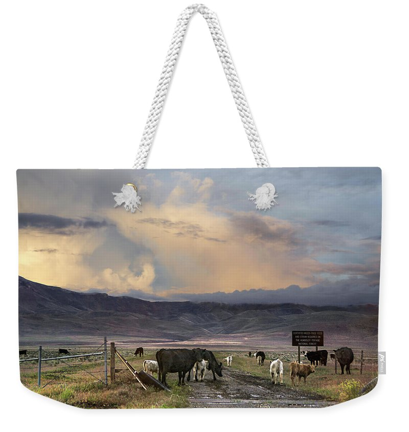 Nevada Weekender Tote Bag featuring the photograph Canyon Road 2 by Karen W Meyer