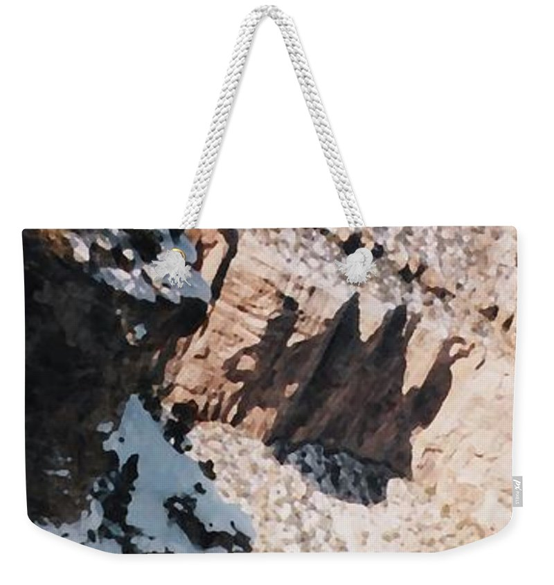 Canyon Weekender Tote Bag featuring the photograph Canyon Side by Pharris Art