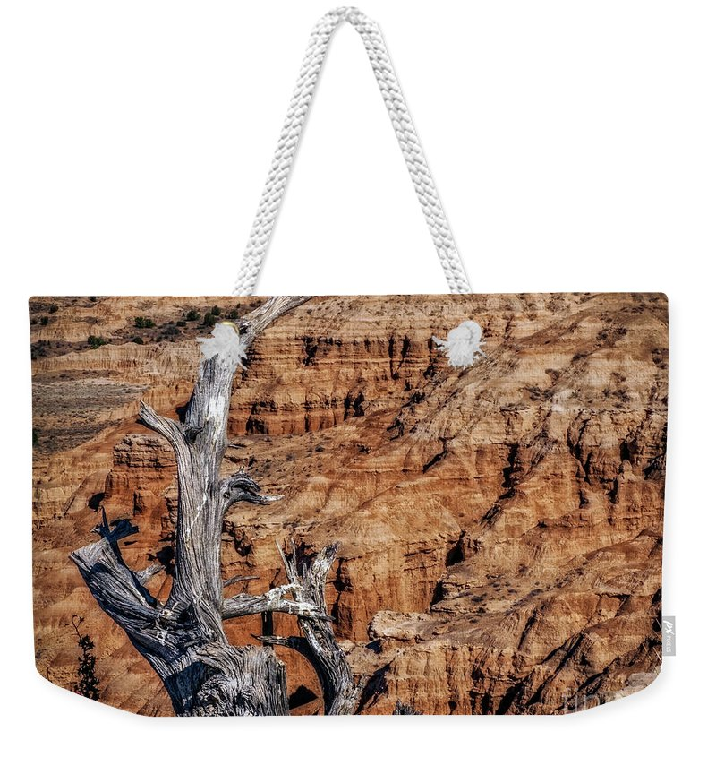 Late Afternoon Weekender Tote Bag featuring the photograph Canyon View Nevada by Joseph Yvon Cote