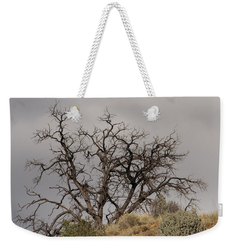 Tree Weekender Tote Bag featuring the photograph Capitol Reef 9553 by Bob Neiman