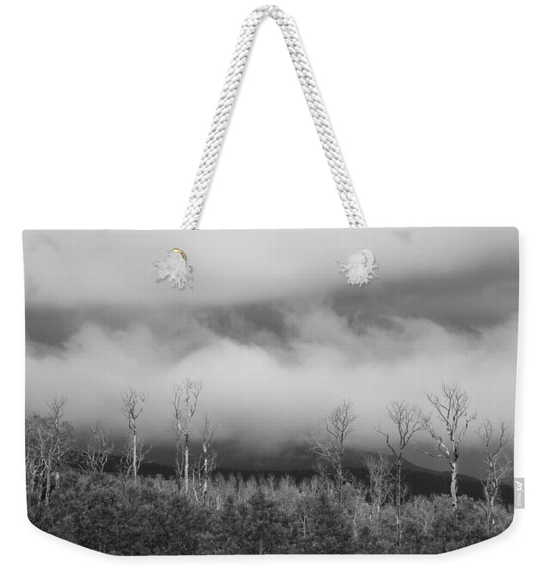 Storm Weekender Tote Bag featuring the photograph Capitol Reef Storm 0186 by Bob Neiman