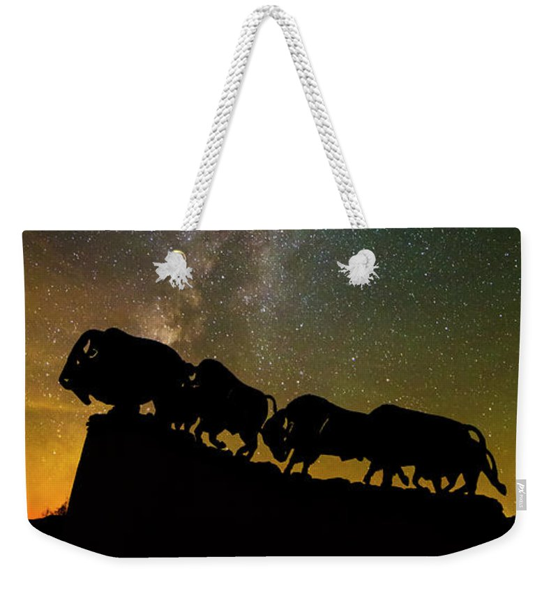 Caprock Canyons State Park Weekender Tote Bag featuring the photograph Caprock Canyon Bison Stars by Stephen Stookey