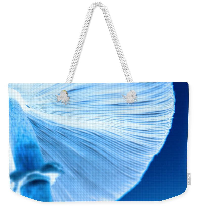 Mushrooms Weekender Tote Bag featuring the photograph Captastic by Amanda Barcon