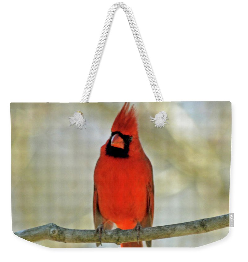 Cardinal Weekender Tote Bag featuring the photograph Cardinal by Jonathan Hill