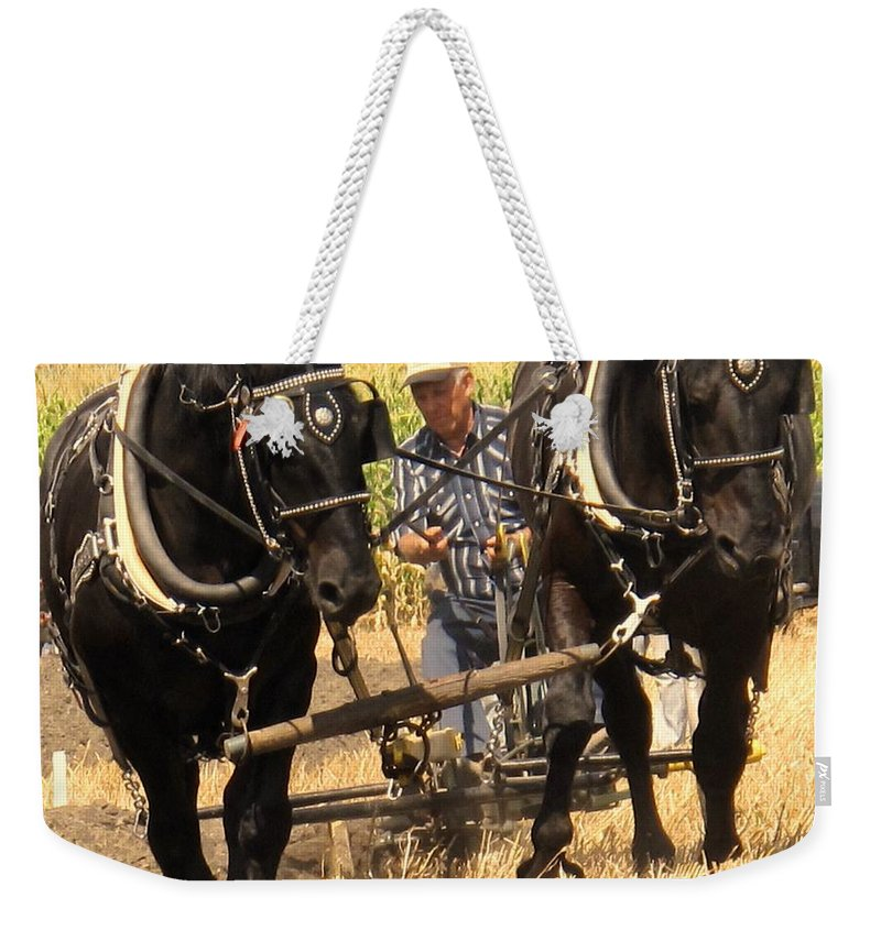 Horses Weekender Tote Bag featuring the photograph Careful Careful by Ian MacDonald