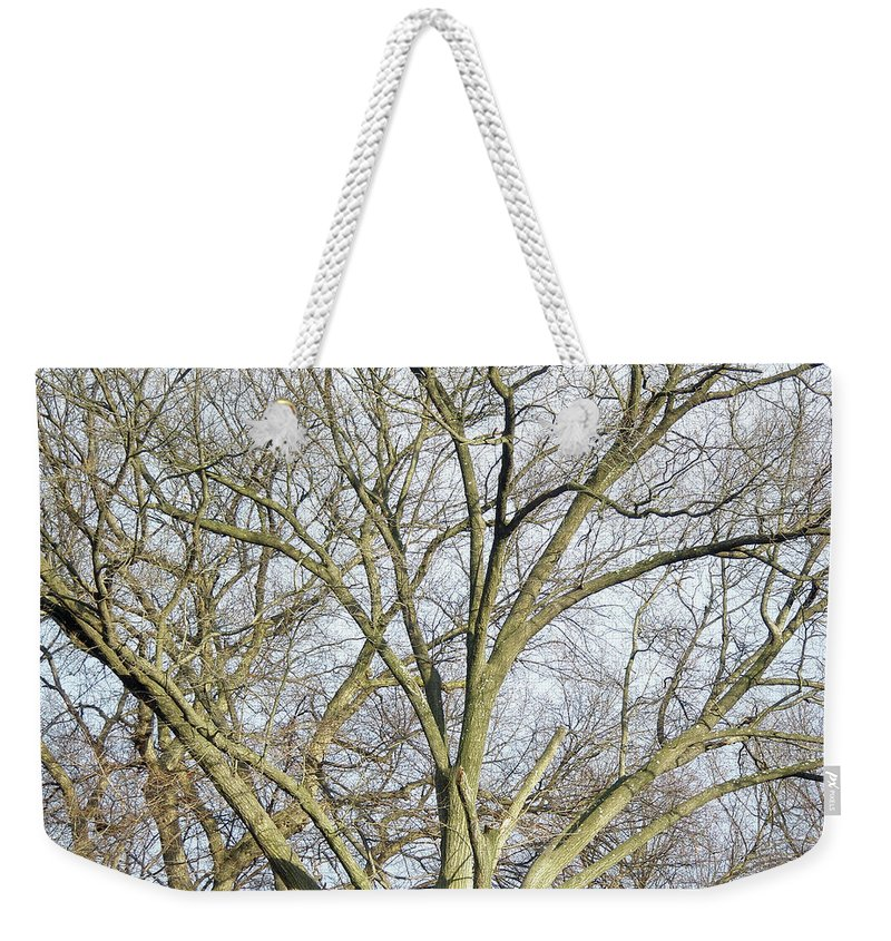 Tree Weekender Tote Bag featuring the photograph Caressing The Sky by Mother Nature