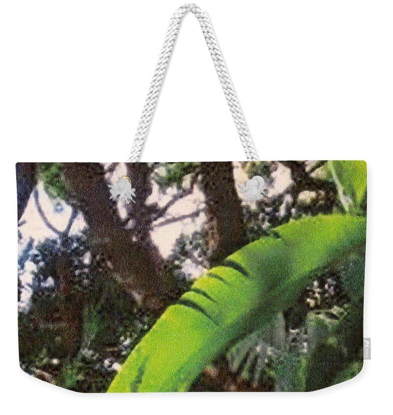 Caribbean Weekender Tote Bag featuring the photograph Caribbean Banana Leaf by Ian MacDonald