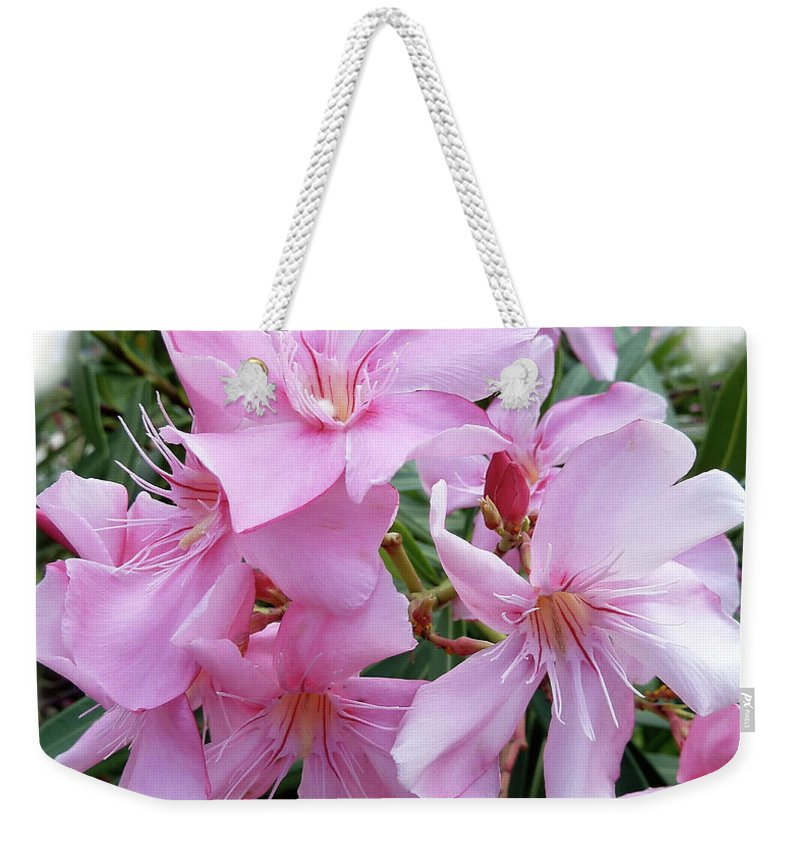 Pink Weekender Tote Bag featuring the photograph Caribbean Oleander by Marie Hicks