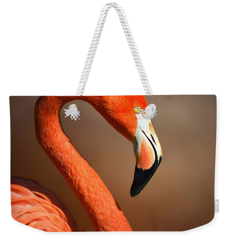 Flamingo Weekender Tote Bag featuring the photograph Caribean Flamingo Portrait by Johan Swanepoel