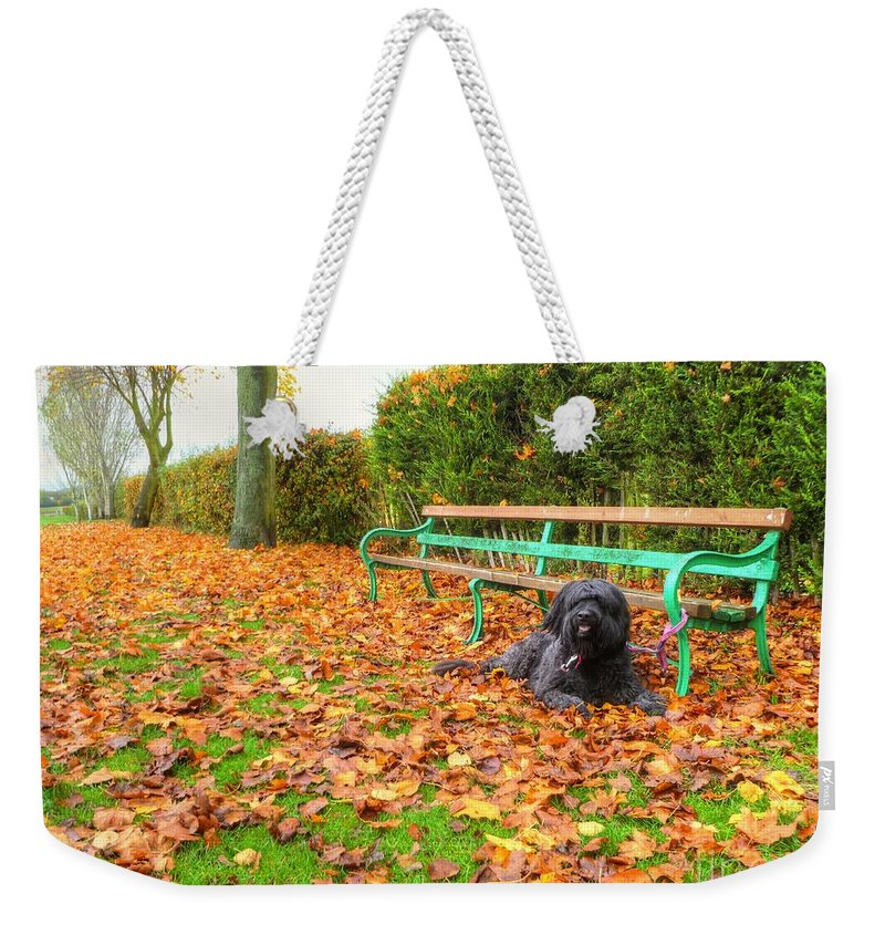 Autumn Weekender Tote Bag featuring the photograph Carpet Of Leaves by Vicki Spindler
