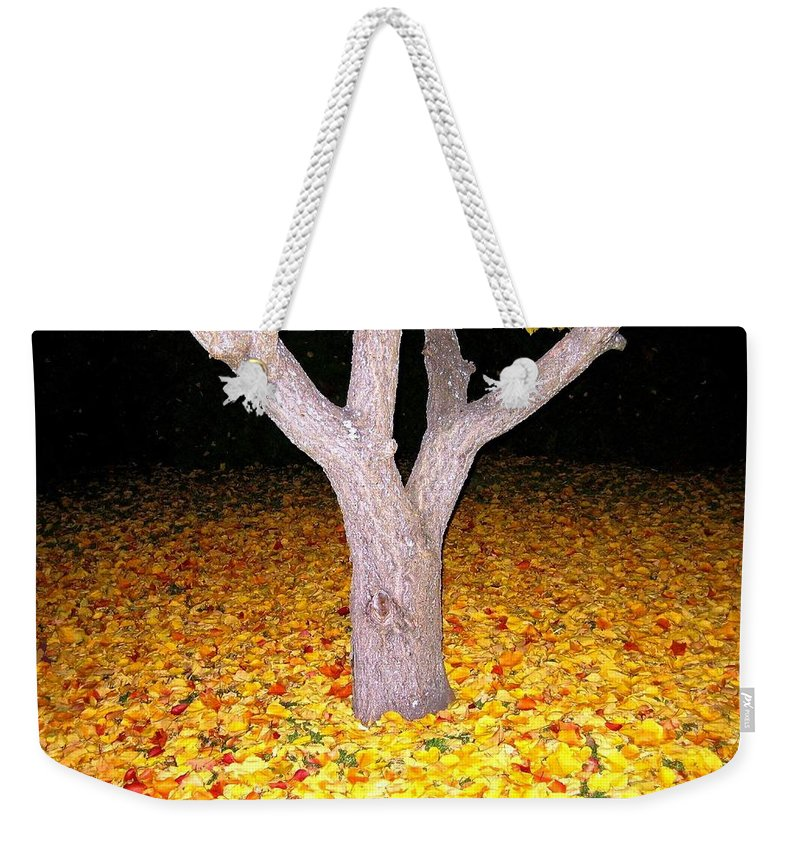 Apricot Leaves Weekender Tote Bag featuring the photograph Carpet Of Leaves by Will Borden