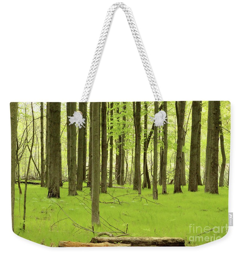 Forest Weekender Tote Bag featuring the photograph Carpeted Forest by Douglas Milligan