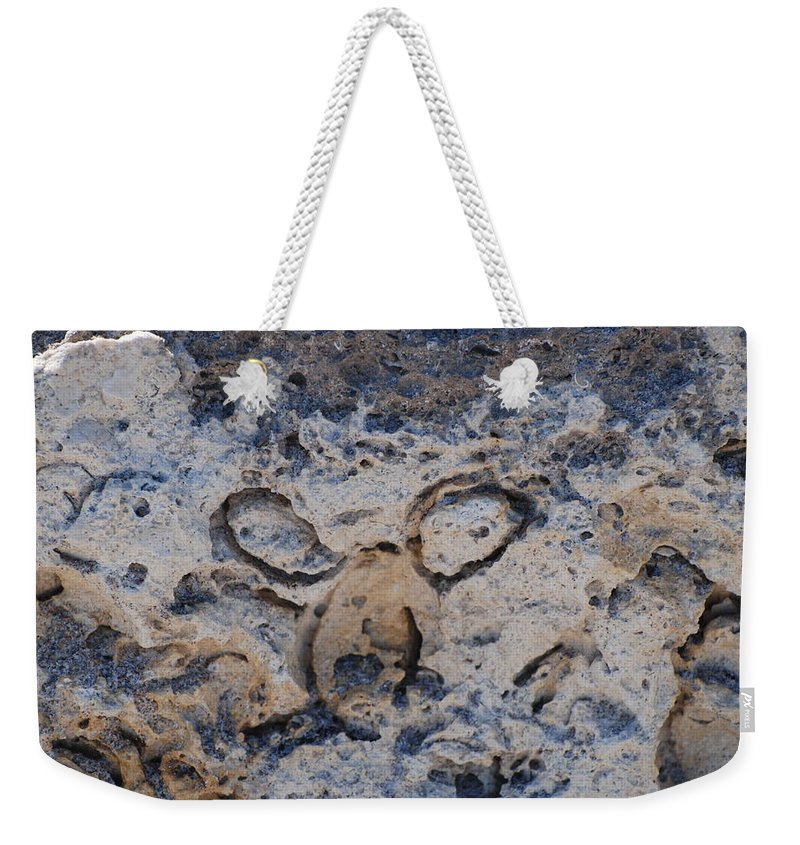 Ocean Weekender Tote Bag featuring the photograph Carved Catface by Rob Hans