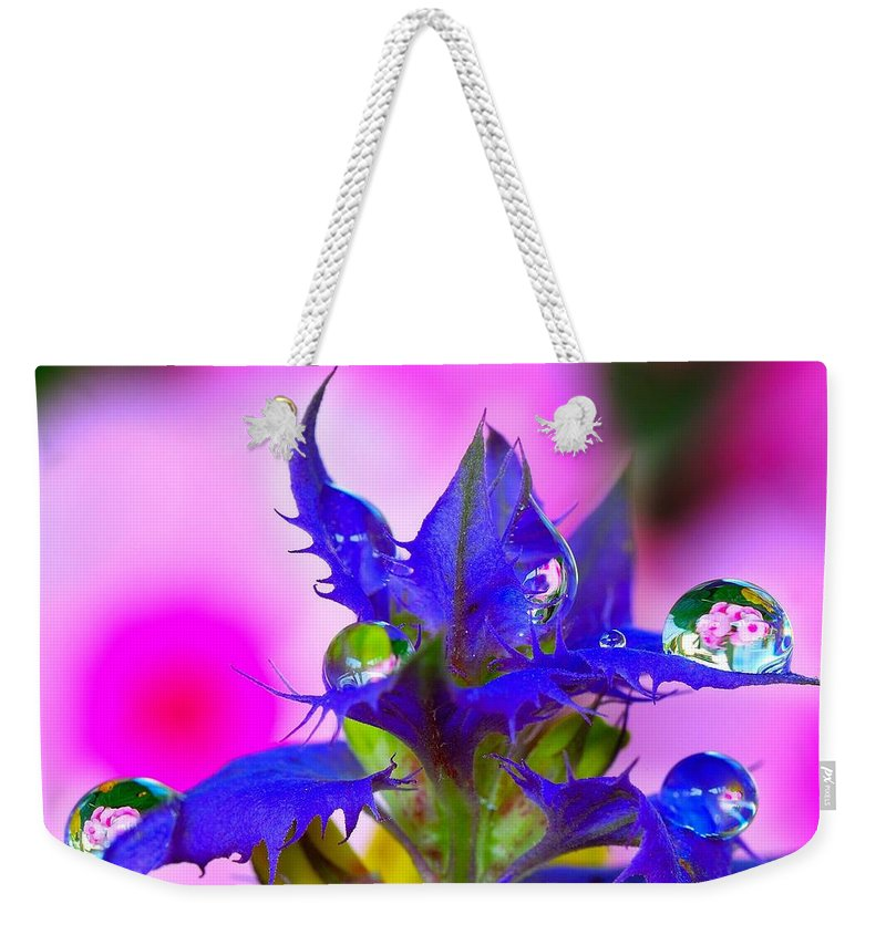 Weekender Tote Bag featuring the photograph Castle Ivan-da-marya by Yuri Hope