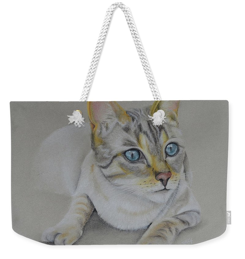 Cat. Cats Weekender Tote Bag featuring the pastel cat drawing - Jackson by Catt Kyriacou