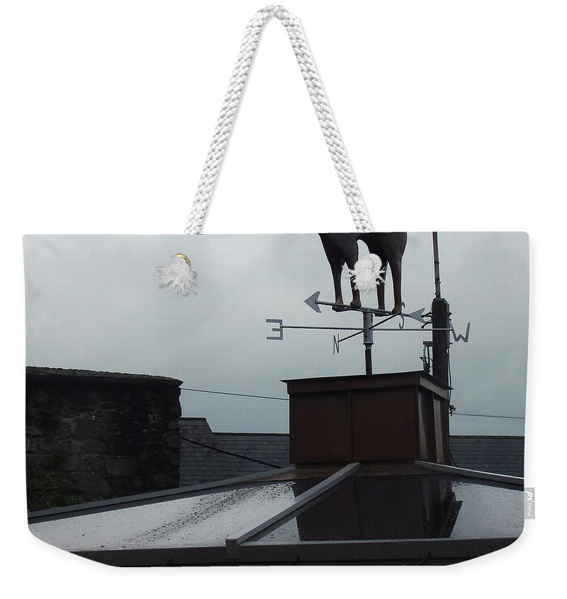 Cat Weekender Tote Bag featuring the photograph Cat On A Cool Tin Roof by Tim Nyberg