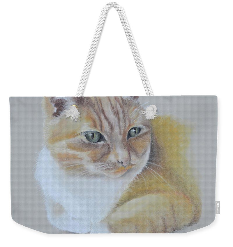 Cat. Cats Weekender Tote Bag featuring the pastel cat portrait - Astra by Catt Kyriacou