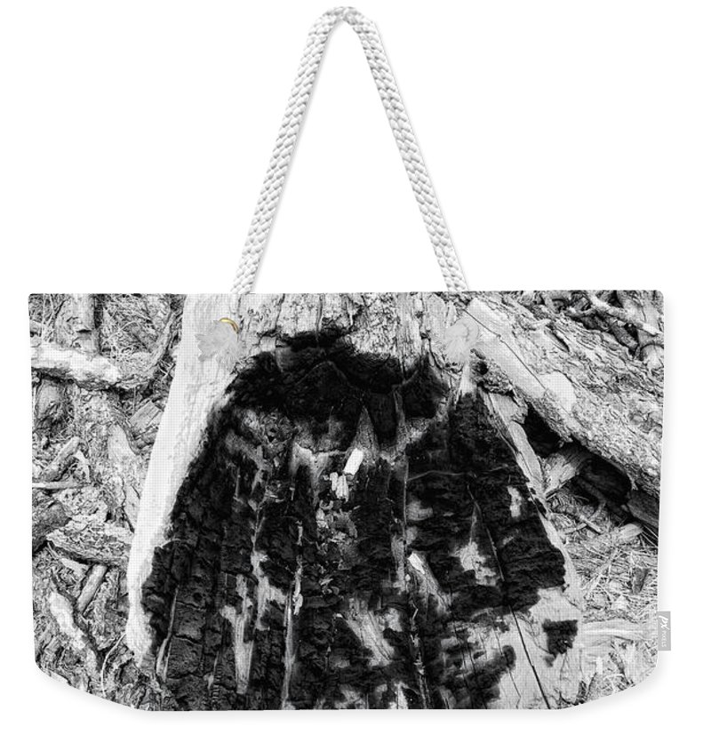 Woo Weekender Tote Bag featuring the photograph Catastrophe by Donna Blackhall